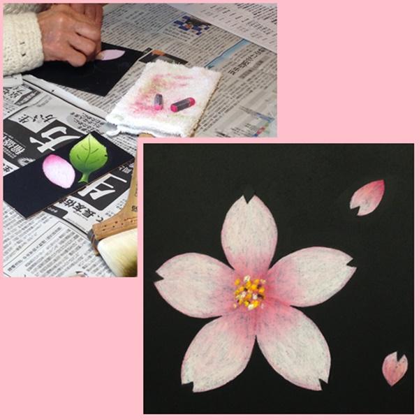 チョークアート 桜